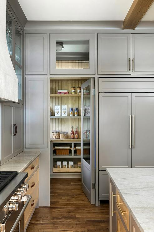 Gray Pantry Door With Large Glass Pane Transitional Kitchen