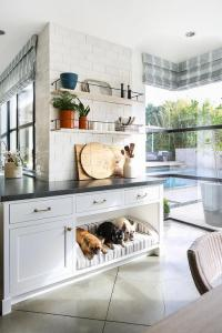 Inset Mirrored Cabinets with Dog Bed - Transitional - Bedroom