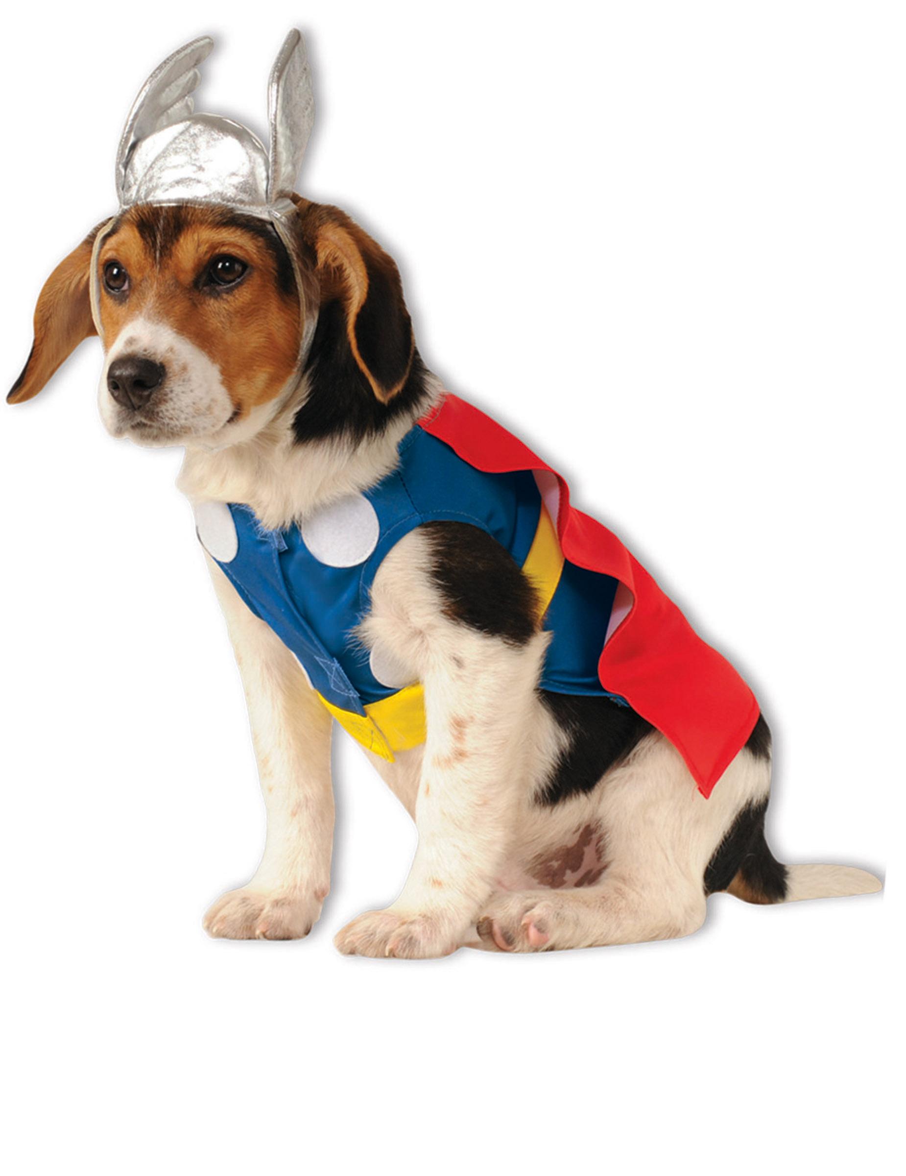 Dguisement pour chien Thor : Deguise