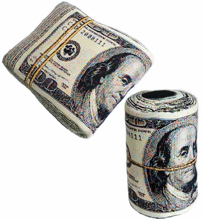 Financial Comfort Sleep on Money with Folded Banknote