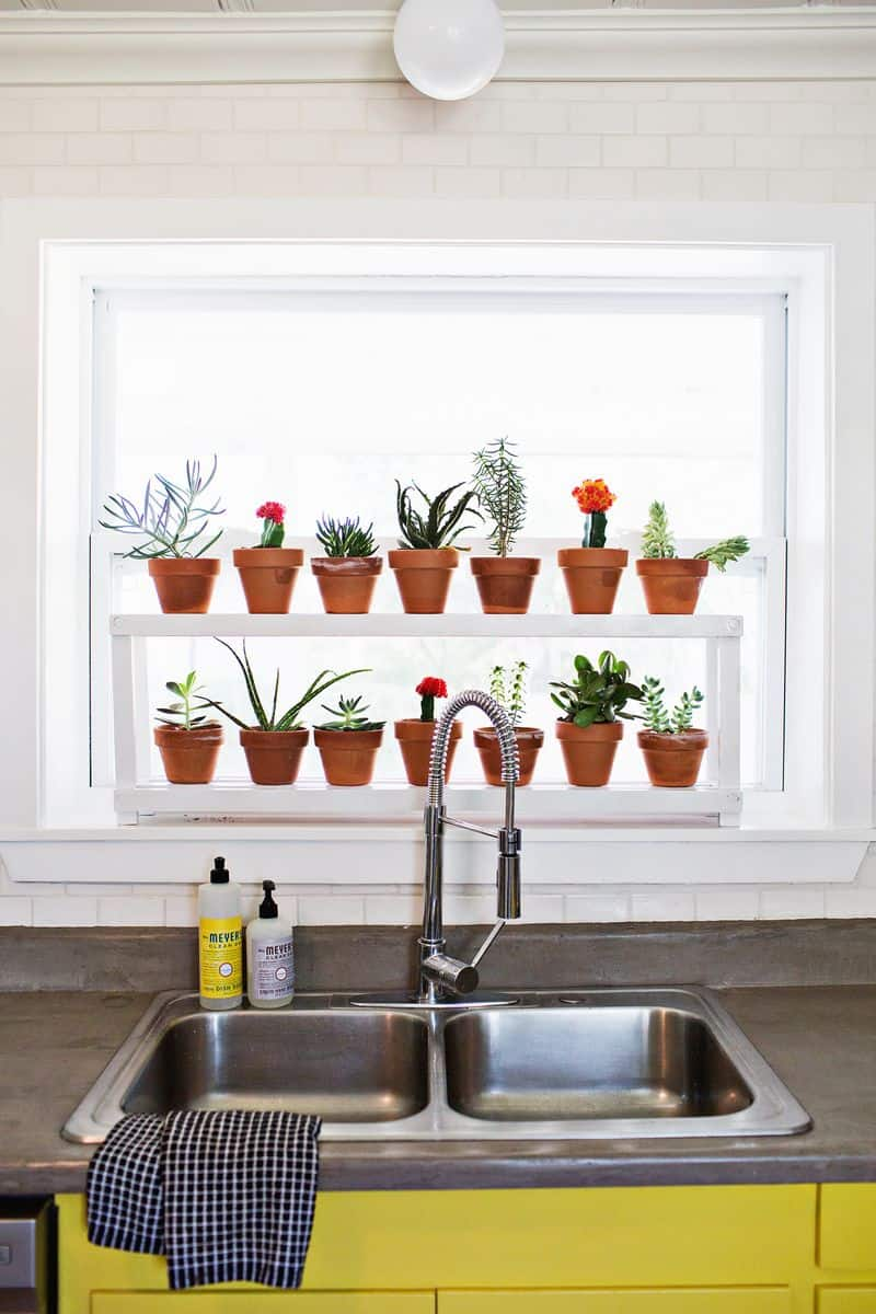 DIY 20 Ideas Of Window Herb Garden For Your Kitchen DesignRulz