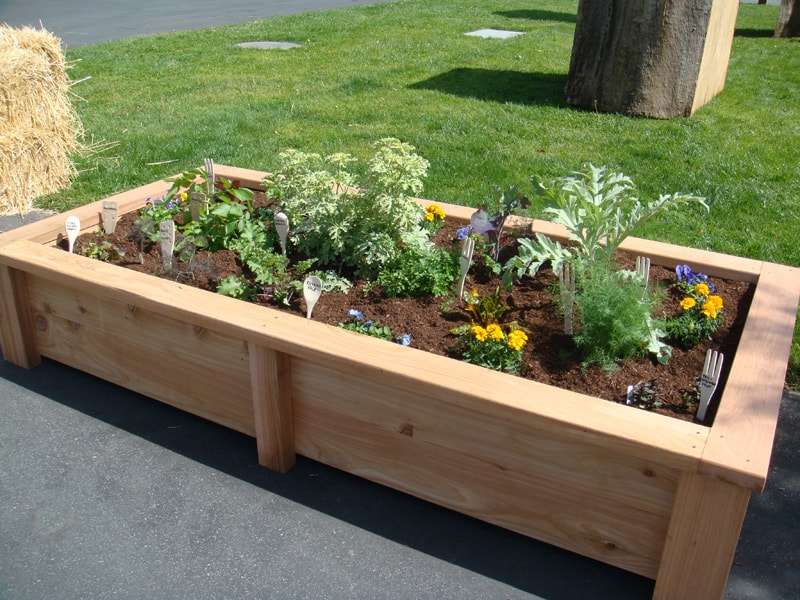 Raised Garden Beds How To Build And Install Them DesignRulz