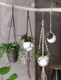 Free Pattern Macrame Plant Hangers