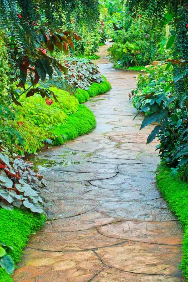 garden paths joy