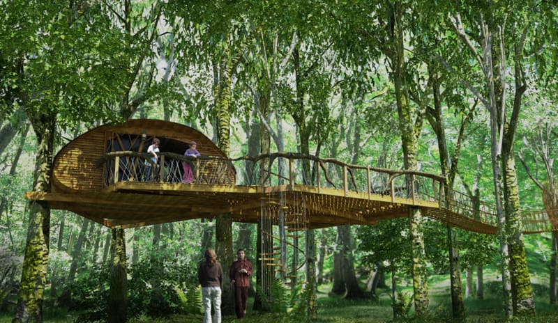 How To Build A Treehouse In The Backyard DesignRulz