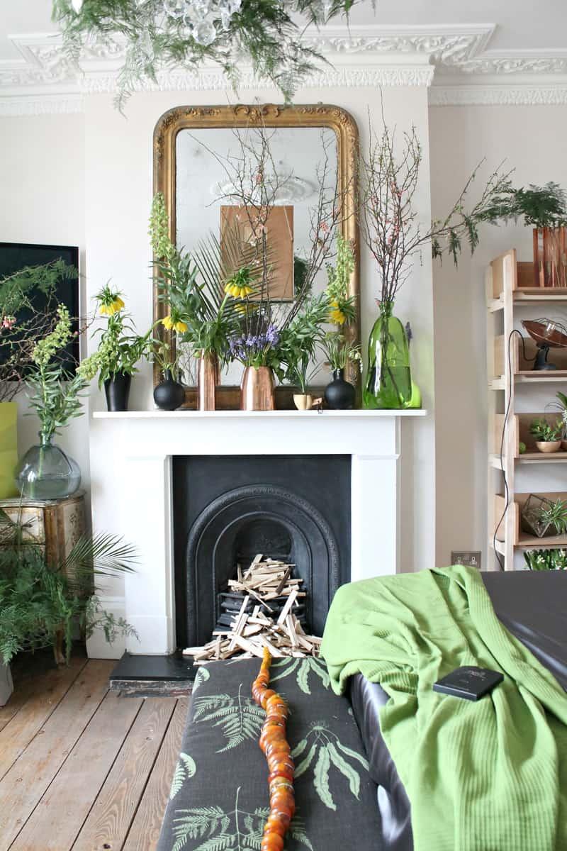 Garden Shelves Plants