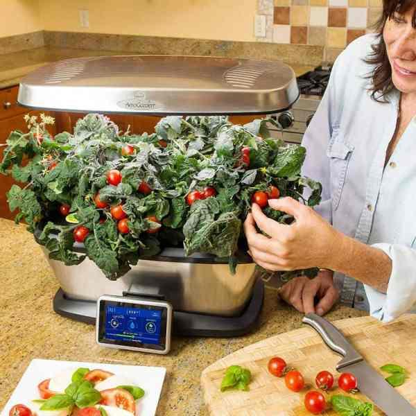 Indoor Gardening Systems