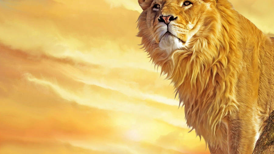 Cute Heart Wallpaper Background Hunting Lion Wallpaper Animal Wallpapers 26821