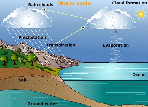 Blizzard Formation Water Cycle