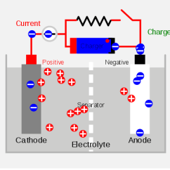 What Is A Cell Diagram Heat Pump Thermostat Wiring Difference Between Primary And Secondary