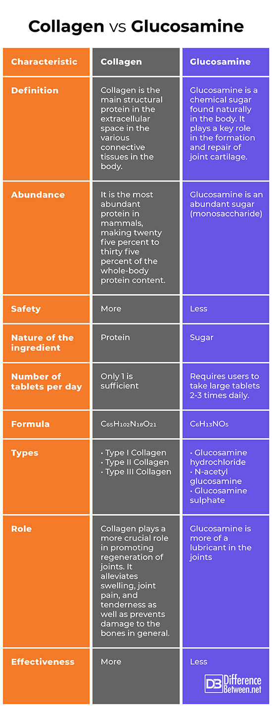 Difference Between Collagen and Glucosamine   Difference ...