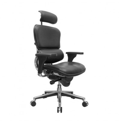 office chair with headrest gym exercises eurotech ergohuman multifunction leather high back executive le9erg