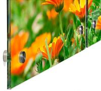 Floral Acrylic Wall Art Panels | Full Color Triptych