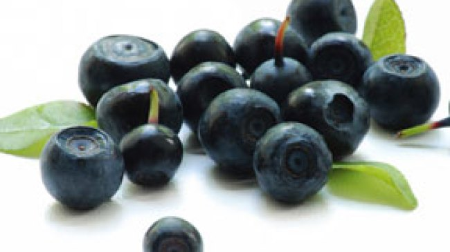 Langsingkan Tubuh Dengan Buah Acai Berry