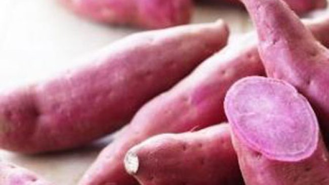 Lancarkan Metabolisme tubuh dengan Makan Ubi Jalar