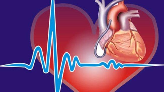 Sumber Makanan Murah Yang Menyehatkan Jantung