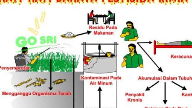 Waspadai Residu Pestisida dan Antibiotik Dalam Bahan Makanan Anda !