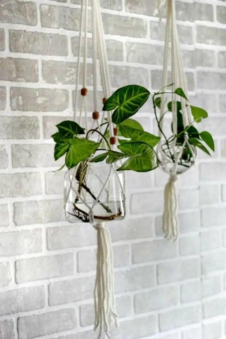 Indoor Hanging Plant Hangers