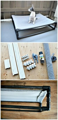 9 DIY Dog Bed Ideas Using PVC Pipe - DIY & Crafts