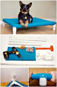 9 DIY Dog Bed Ideas Using PVC Pipe