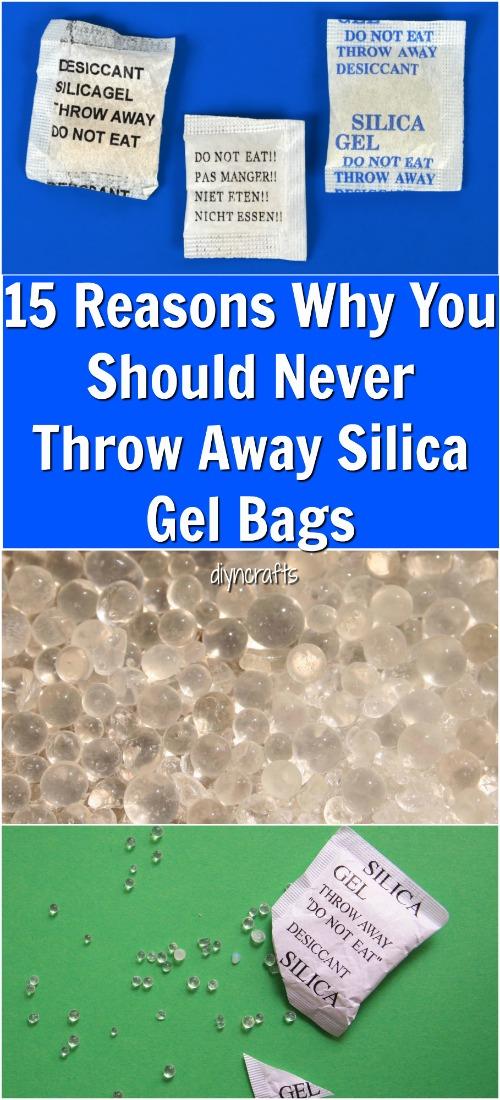 Dog Ate Silica Beads : silica, beads, Silica, Beads, DogWalls