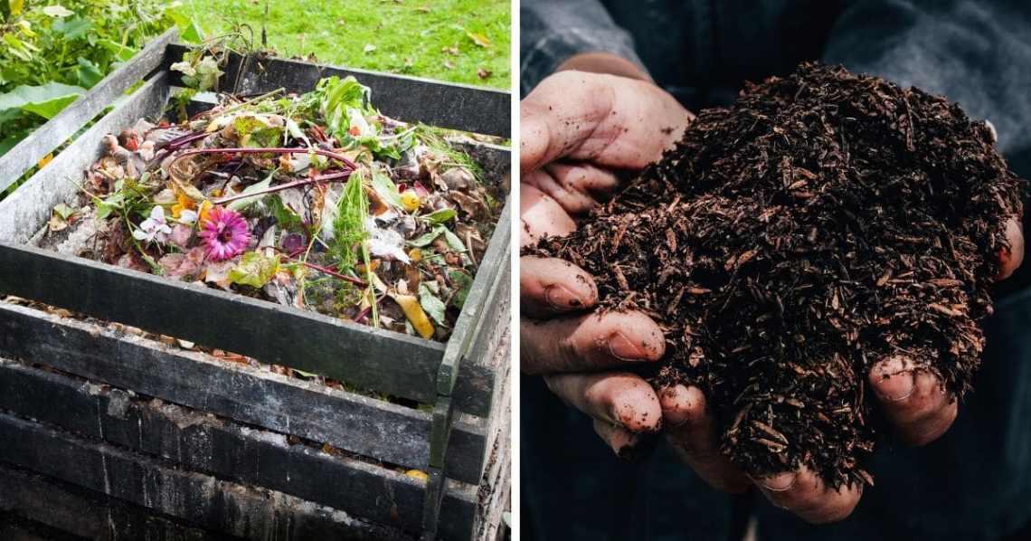 15 Organic Diy Garden Fertilizer Recipes That Ll Beautify Your Garden Diy Crafts