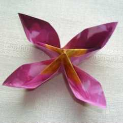 Carambola Flower Origami Diagram 98 4runner Factory Radio Wiring Decorate Your Home With These Beautiful Flowers Pink Four Petal