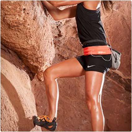 Fitness-Workout-Belt