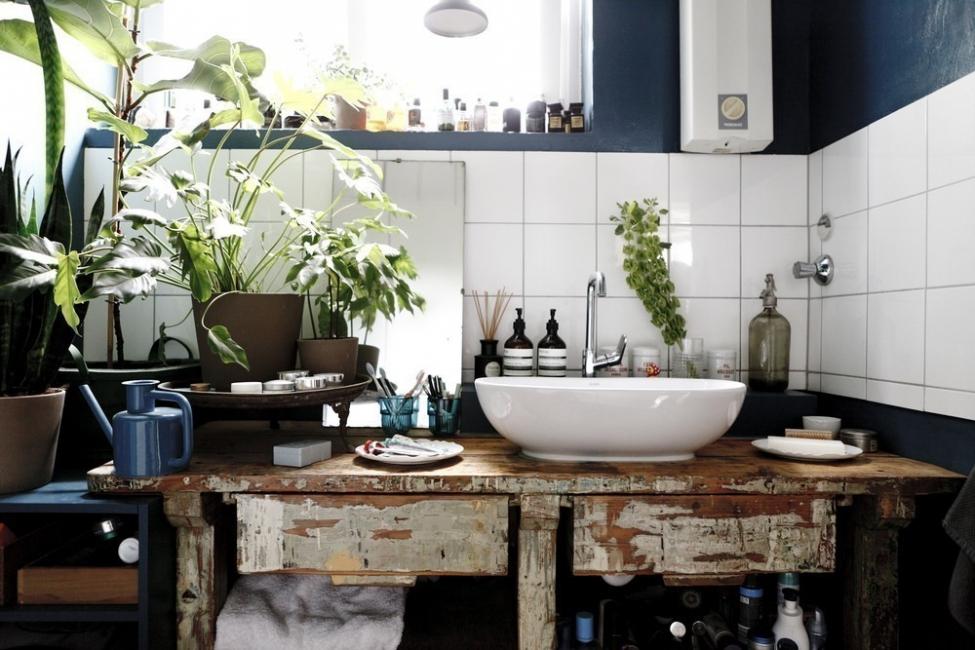 12 ideas para decorar con plantas