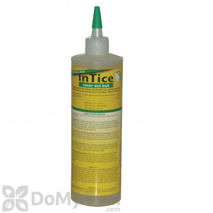 Borates Borate Pest Control Products Borate Insecticide