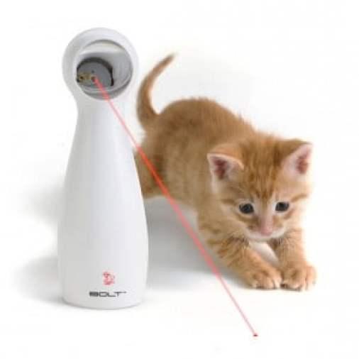 evcil hayvanlar - bolt laser