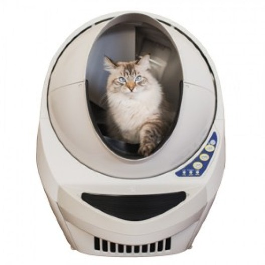 evcil hayvanlar -litter robot