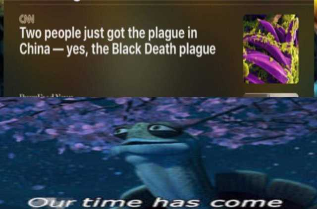dopl3r.com - Memes - CAN Two people just got the plague in China ...