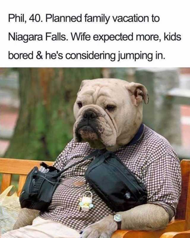 Dopl3r Com Memes Phil 40 Planned Family Vacation To Niagara Falls Wife Expected More Kids Bored Hes Considering Jumping In