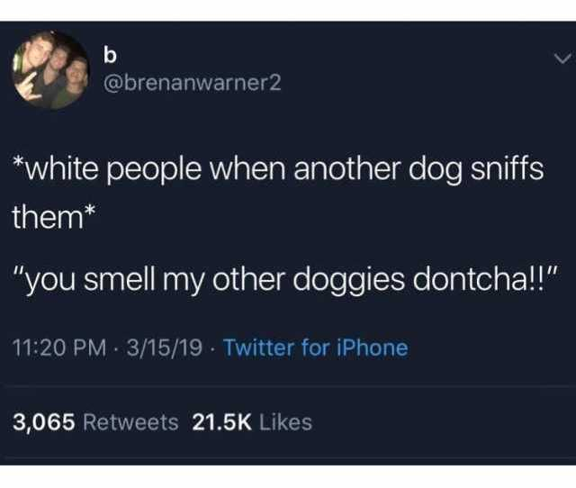 Brenanwarner2 White People When Another Dog Sniffs Them You Smell My Other Doggies