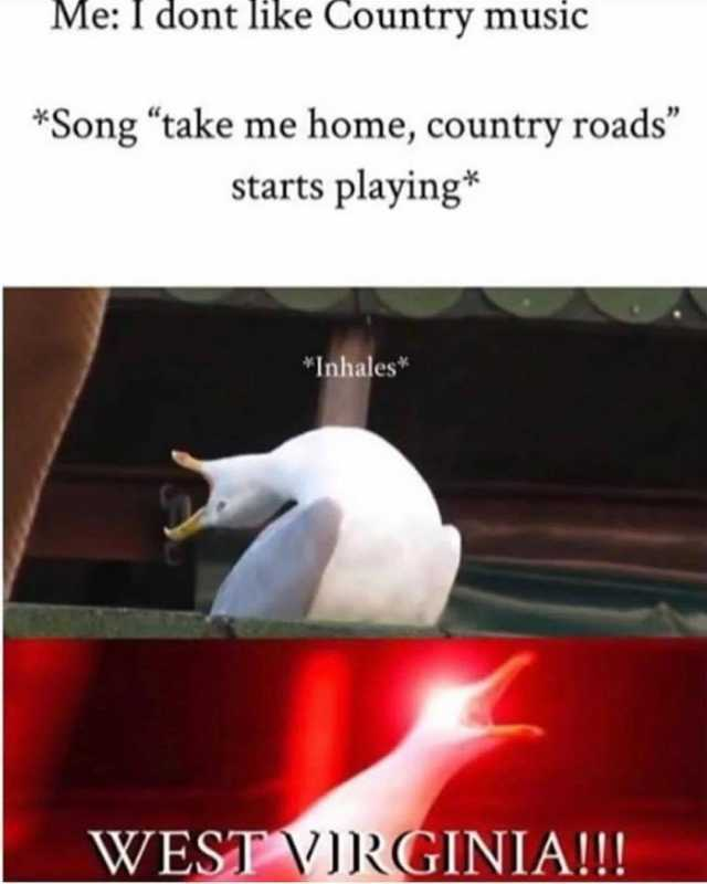 Dont Laugh Me Song
