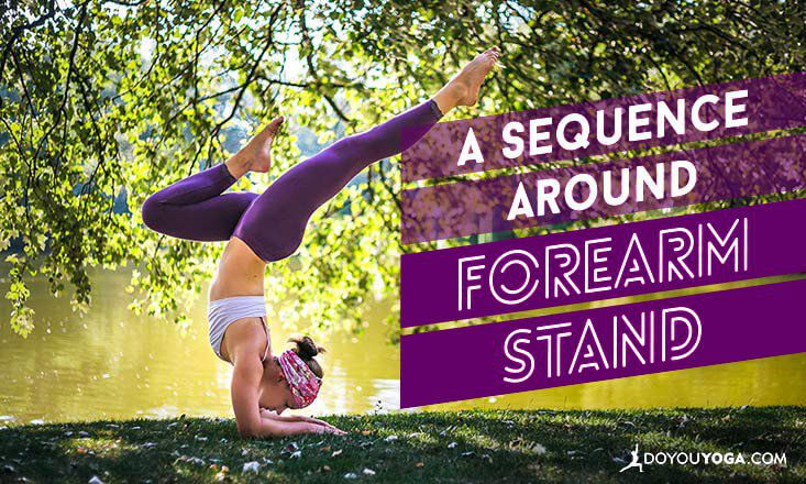 How to Build a Sequence Around Forearm Stand  DOYOUYOGA