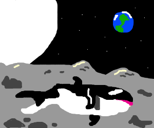 whalephant ponders peacefully with