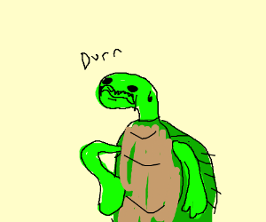 turtle is the epitome