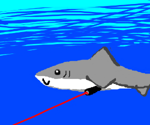 sharks with lasers attatched