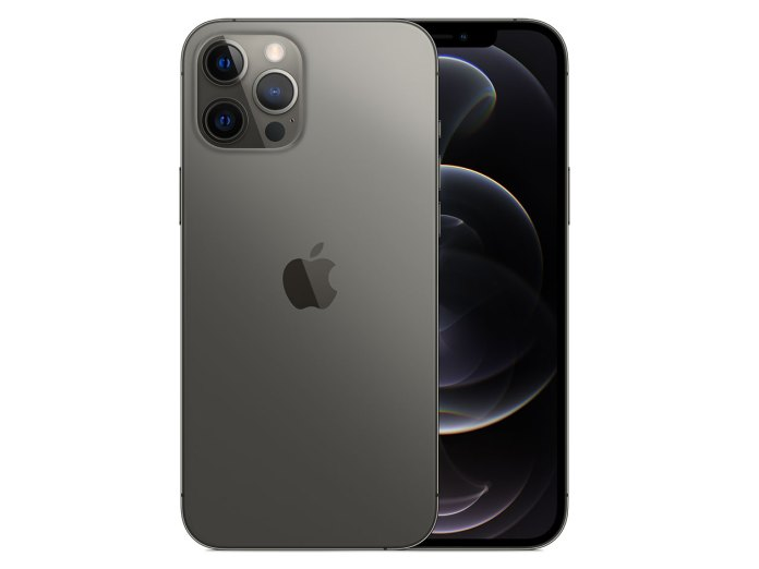 Apple Iphone 12 Pro Max Camera Review Big And Beautiful