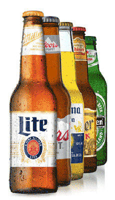Brands of Beer Bottles