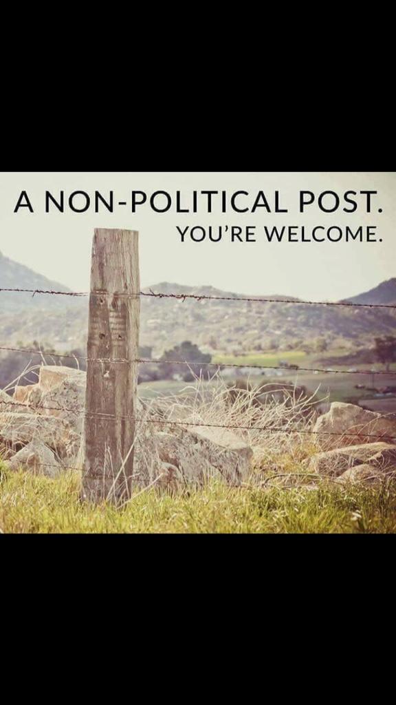 political post