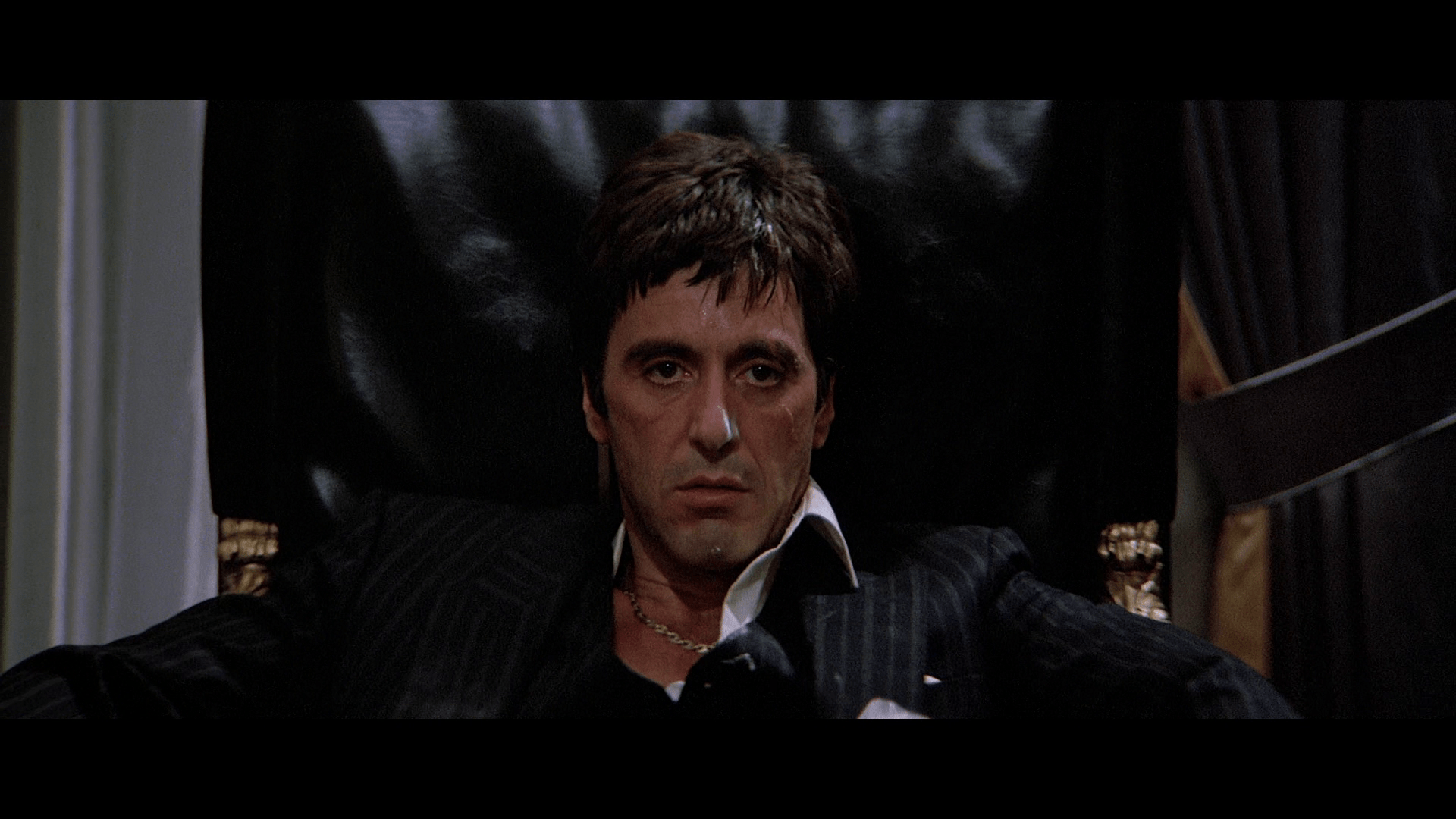Scarface The Pictures And The Facts Gallery EBaums World