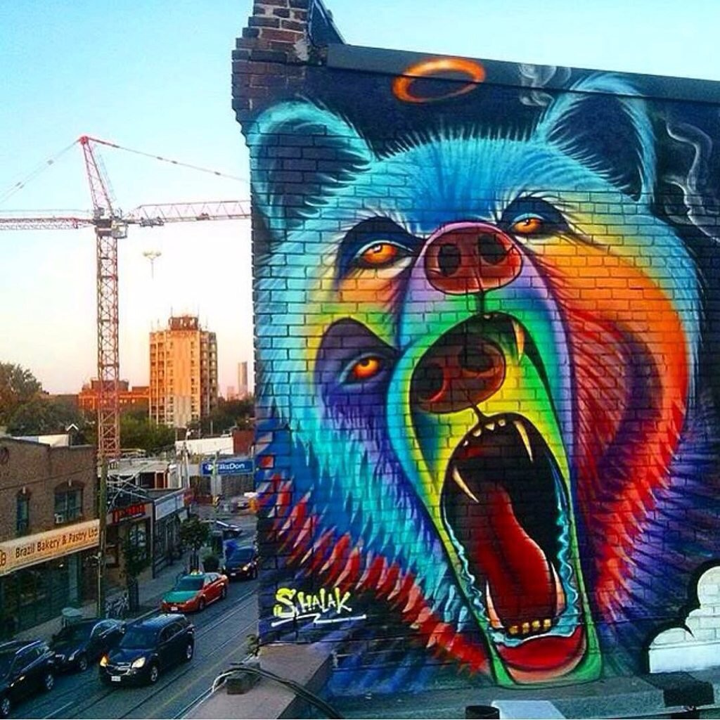 bear wall