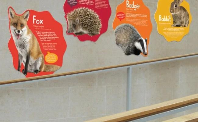 Animal Classification Mural