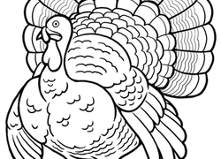 1st Grade Thanksgiving Worksheets & Free Printables