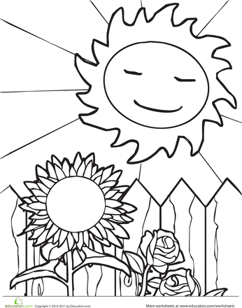 In Season! 8 Coloring Pages for the Four Seasons