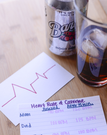 Caffeine And Heart Rate What Is The Effect Of Caffeine On Heart