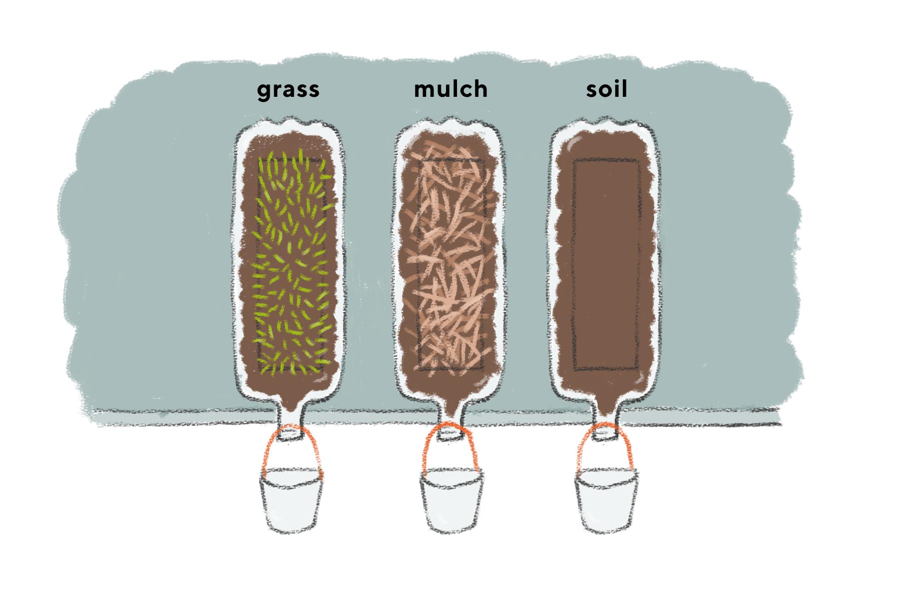 Explore Soil Erosion